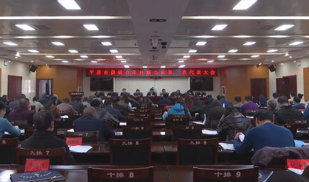 市供销合作社联合社召开第一次代表大会